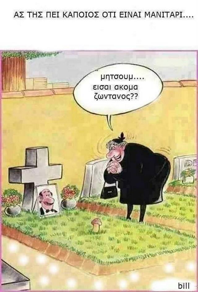 funnyphotweek2621165.jpg
