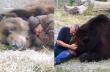 Οι τρυφερές στιγμές ενός ανθρώπου με μία αρκούδα