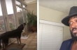 Ντουέτο με έναν σκύλο