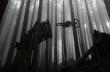 Ο Steve Vanderhoek καβαλάει τα πιο τρομακτικά lines
