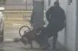 Αστυνομικός δέχεται γροθιά και ελευθερώνει τον εκπαιδευμένο σκύλο του