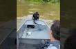 Ψαράδες βοηθούν μια μαϊμού
