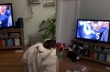 Όταν ο σκύλος σου ακούει το όνομά του στην τηλεόραση