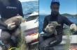 Ψαράς σώζει ένα μικρό δελφίνι