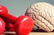 Η άσκηση επιβραδύνει τη συρρίκνωση του εγκεφάλου καθώς γερνάμε
